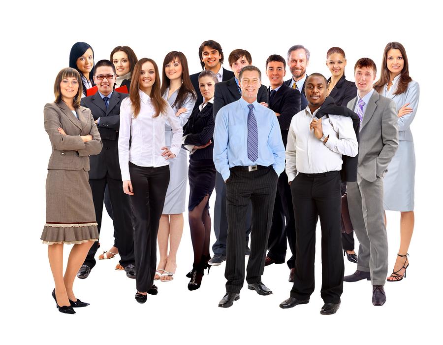 Entrepreneur-consultants